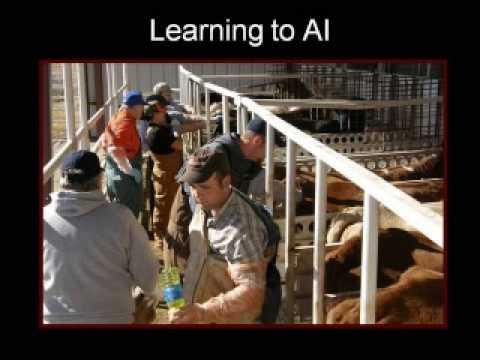Redlands Community College Agriculture-Equine 2009
