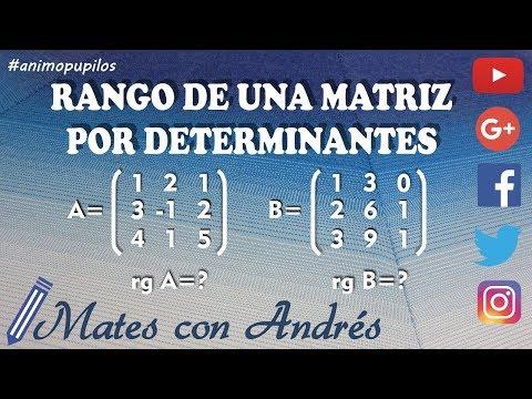 Rango de una matriz por determinantes 01