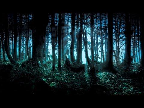 ПАРАНОРМАЛЬНЫЕ ЯВЛЕНИЯ КОТОРЫЕ ВАС МОГУТ ВСТРЕТИТЬ В ЛЕСУ.Paranormal THAT YOU CAN MEET IN THE FOREST