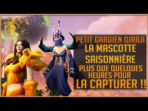 World Of Warcraft - La Mascotte Saisonnière, Le Petit Gardien QIRAJI !