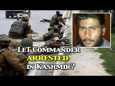 Dreaded LeT commander Abu Ukasha arrested in Kashmir's Kupwara