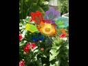 Ernie K-Doe Mother-In-Law [video]