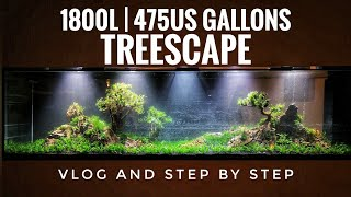 1.800L   475US gal   Treescape   VLOG and Step by step