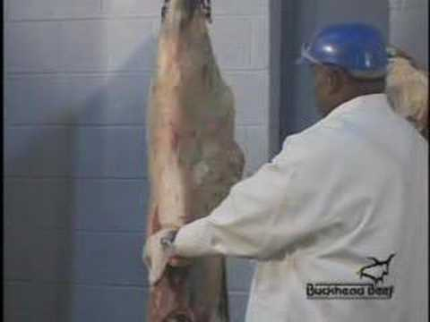 Beef Carcass Break Down 1 - butcher