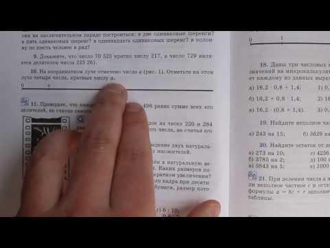Задача №10. Математика 6 класс Виленкин.