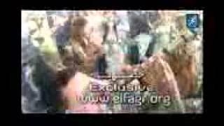 لوسى  تفتتح حفل زفاف  دنيا سمير غانم  بـ رقصة  تعيدها على الساحة   YouTube
