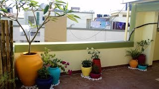 MySunnyBalcony - A terrific terrace makeover!