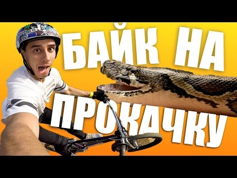 БАЙК НА ПРОКАЧКУ #5 // Змея - BMX (Дима Гордей)