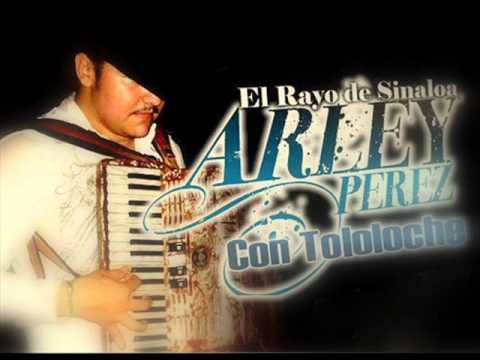 Arley Perez & Colmillo Norteño- Licenciado damazo Y El Gansito