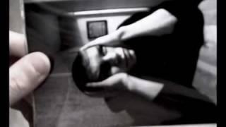 Amatory - Черно-белые дни