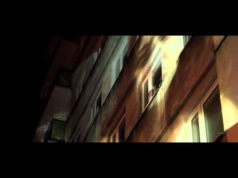 Wizja Dźwięku - Piotr Rogucki