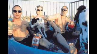 Watch Sublime Thanks Dub video
