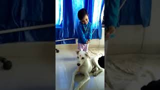 Falguni Chouhan funny video with dog