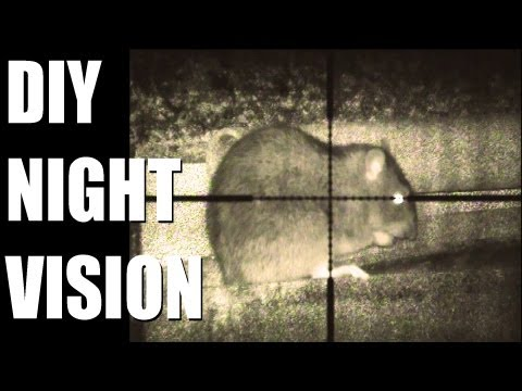 Fieldsports Britain - DIY night vision + flying hawks on pheasants (episode 163)