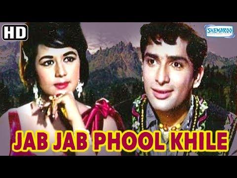 Jab Jab Phool Khile - 1965 - Full Movie In 15 Mins - Shashi...