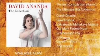 DAVID ANANDA The Collection  album 2014 Promo