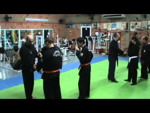 Training With MASTER Hapkido Te Bo Lee Image 1