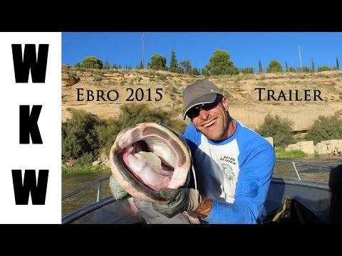 Ebro 2015   Trailer  Wyprawa na sumy Forum sumowe Hiszpania , Caspe