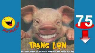 Truyện cười Trạng Lợn Trạng Quỳnh    Truyện Cười Việt Nam    Cười Xả Xì Chét