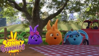 Cartoons For Children | SUNNY BUNNIES - YOU HARVEST WHAT YOU SOW | New Episode | Season 3