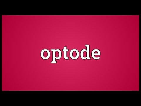 Header of Optode