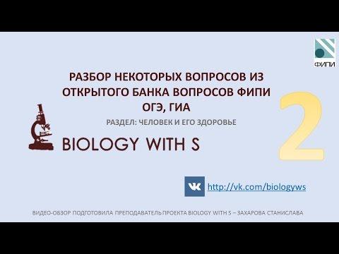 Разбор вопросов ОГЭ, ГИА (ФИПИ) от проекта Biology with S. ЧЕЛОВЕК И ЕГО ЗДОРОВЬЕ Ч.2.