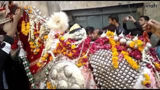 9th muharram 1438 / 2016-2017 Wassan Pura,Lahore Zuljinah Jaloos