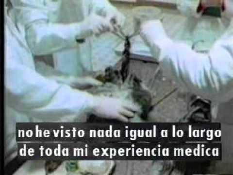 EXTRATERRESTRES EN LOS ARCHIVOS DE LA KGB 1 DE 4.wmv