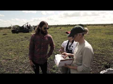 Jared Leto Becomes WWF Global Ambassador