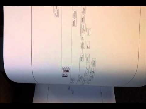 Family Tree Printing