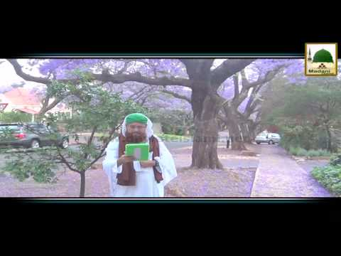 Package 03 - Pretoria South Africa Rukn-e-Shura Kay Madani Phool