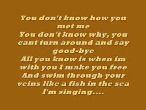 Uncle Kracker follow me lyrics