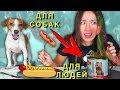 Собачья Еда ПРОТИВ Настоящей Челлендж ч 2 Не Обычная Еда | Elli Di Pets