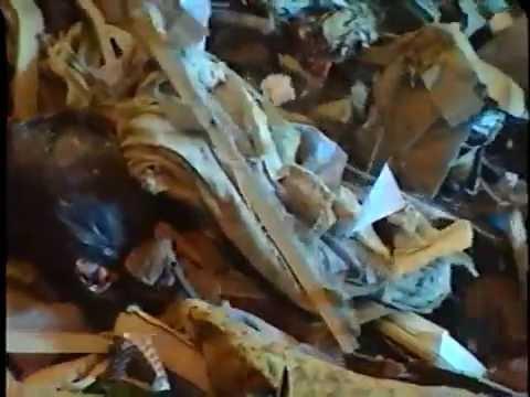 Tina's Journal Waste Transfer
