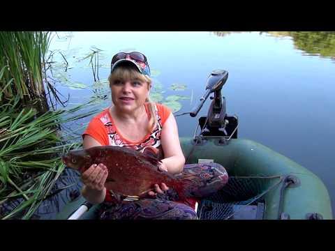 Лещ в реке Медведица! Женская рыбалка в Жирновске! Women's fishing and a huge bream