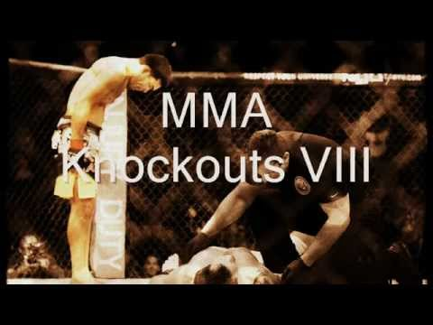 MMA Highlights VIII Image 1