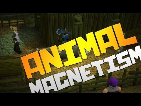 Runescape 3 ULTIMATE Quest Guide: Animal Magnetism with Commentary!