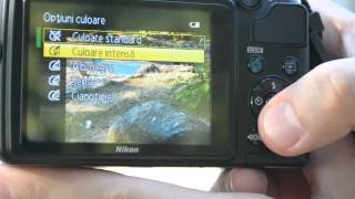 Nikon Coolpix L310 Review and demo