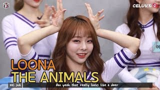 "[ENG] LOONA Celuv.TV Highlights #02 | ""LOONA the Animals"""