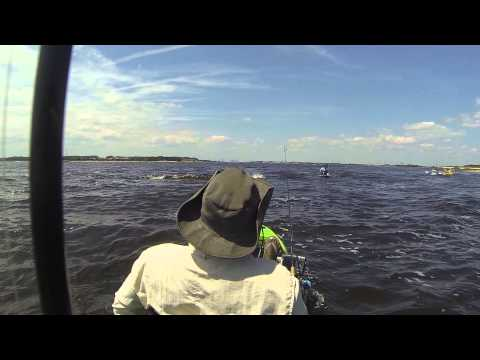 Fishing The St. Johns River