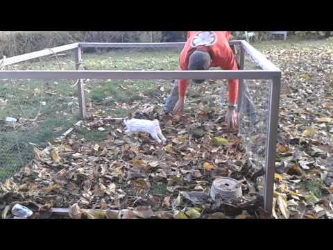 ウサギと男性が落ち葉で遊ぶ!?あれ?こんなにウサギって戯れるんでした?
