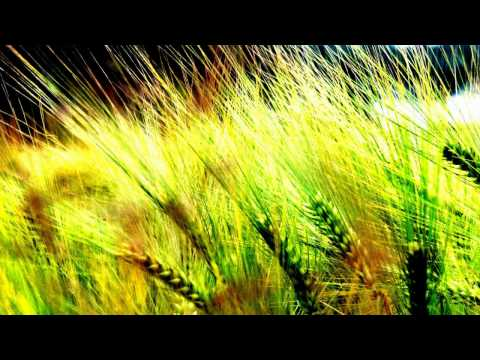 A Deep Summer [Deep House, 2011] Music Videos