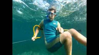 SPEARFISHING OFF SHELLHARBOUR POOL