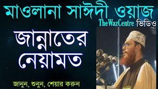 Download জান্নাতের নেয়ামত। Maulana Delwar Hossain Saidi Waz। Bangla Waj 3Gp Mp4