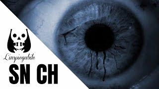 L'oscuro segreto del canale YouTube SN CH