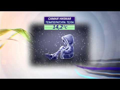 Температура тела. Популярная наука с Анной Урманцевой.