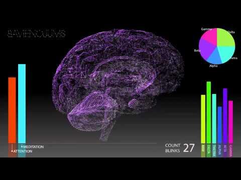 Online reputation management leader fat brain interactive announces