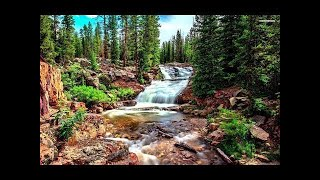 Relaxing Harp Music Peaceful Background Music for Home and Office! 2