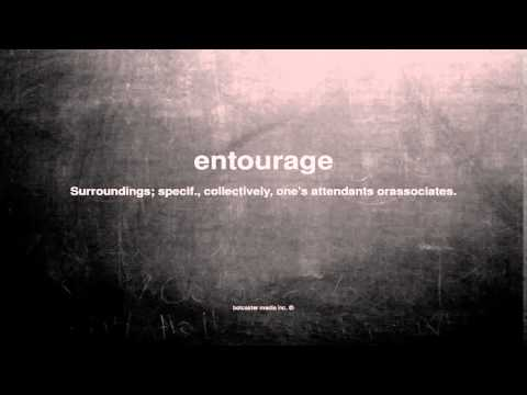 What does entourage mean