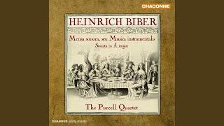 Mensa sonora, seu Musica instrumentalis: Sonata No. 5 in E Major: V. Gavotte: Alla breve